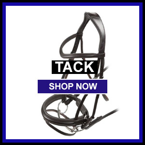 Bridles, martingales, breastplates, stirrups