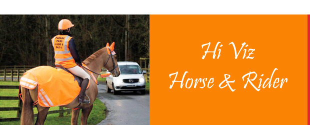 Hi Viz for horse and rider